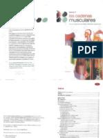 Cadenas Musculares Busquet Pdf Download