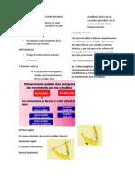 Factores Fijos de La Oclusion Organica
