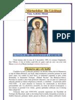 115. Sfantul Părinte Ilie Lacatusu