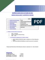 INFORME DIARIO ONEMI MAGALLANES 08.10.2012