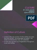 Culture Version 1.2