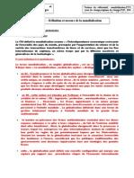 chapitre mondialisation fiches 2008-2009