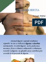 Digestia Si Absorbtia