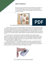 Identificarea Biometrica