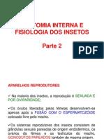 ANATOMIA INTERNA E FISIOLOGIA DOS INSETOS Parte 2