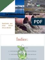 Trabajo de Contaminación del agua
