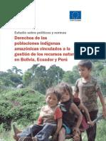 Población Indígenas