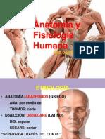 Anatomia Humana IV Clase Upt