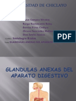 glandulas_ (1)