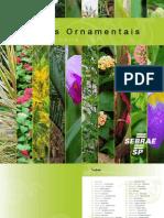 Catalogo Plantas Ornamentais