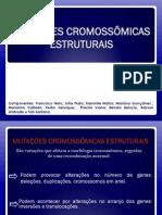 Mutação Cromossomica Estrutural