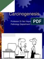 Carcinogen Es is 22