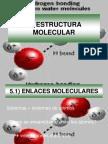 fsicamolecular-cap5-100712074639-phpapp01