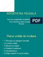 SOCIETATEA FEUDALA - ORGANIZARE