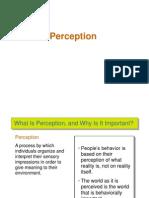 3. Perception