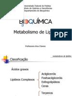 10 Metabolismo de Lipídios Graduação PDF