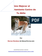Como Mejorar El Comportamiento Canino de Tu Akita