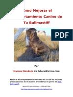 Como Mejorar El Comportamiento Canino de Tu Bullmastiff