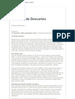 A dúvida de Descartes - luisafonso