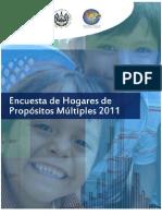 Encuesta de hogares de propósitos múltiples 2011