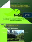 Presentacion SAPCO IX Encuentro de Invierno