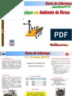 Curso de Liderança - 2012