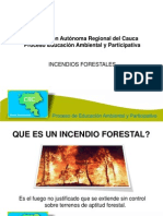 incendiosforestales-101110102552-phpapp02