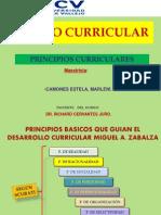 Principios Basicos Para El Desarrollo Curricular