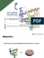 I-2 -Mioglobina_Doseamento_Cálculos_grupo1_PL2