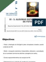 III-3. Fotossíntese