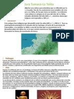 Cultura Tumaco-La Tolita