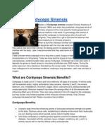 What is Cordyceps Sinensis