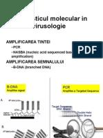 LP 7 Dg Molecular 2009
