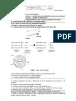 problemas_cuestións_reacción_ química