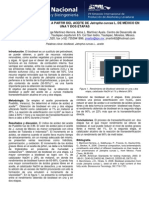 Jotropa Biodiesel 2 Metodos