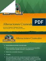 Trabalho Embriologia 2 Ricardo Arisson