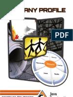 Java Construction Company Profil 2012
