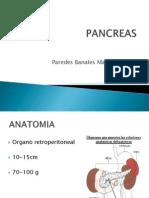 pancreas-101024222110-phpapp02
