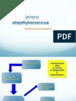 PPestafilococo Aureus