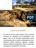 Clase9- Contaminacion Del Suelo