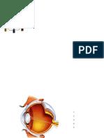el_ojo_y_función_correccion