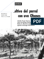 El cultivo del Parral con Uva Oanes 1965