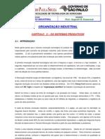 ORGANIZAÇÃO INDUSTRIAL - SISTEMAS PRODUTIVOS
