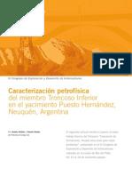 Caracterización petrofísica Cuenca Neuquen