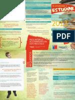 INFORMACIÓN PARA POSTULAR AL CAE 2013-1