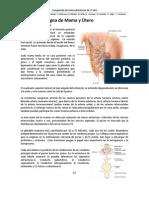 09 - Patologia Benigna de Mama y Utero