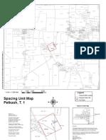 Petkash T Spacing Unit Map