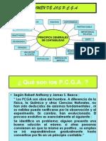 Explicación PCGA con CAsos [Modo de compatibilidad] PDF