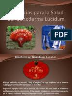Beneficios Ganoderma Lucidum