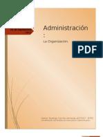 Organizacionç